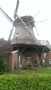 Mühle hinten